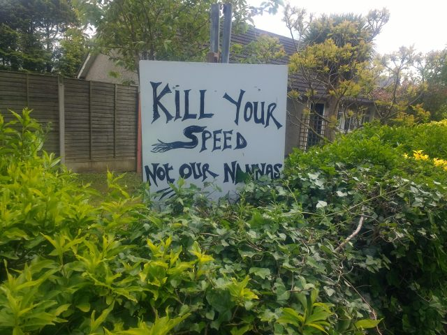 Kill You Speed Not Our Nanas